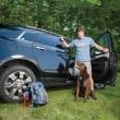 Postroj pro psy do auta Tru-Fit černý