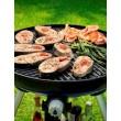 Kempinkový plynový gril Cadac Carri Chef 2 BBQ